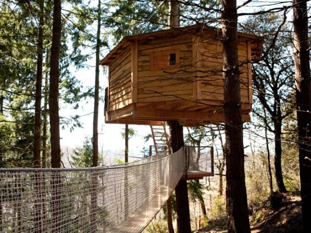 featured posts image for Nested huts hanging in the trees