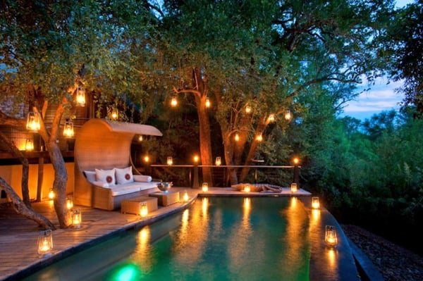 featured posts image for Sumptuous Morukuru Lodge in Madikwe reserve