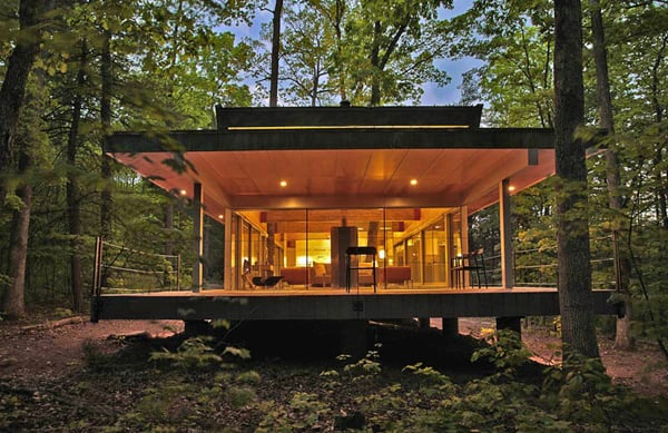 featured posts image for Modern home integrating real trees in the structure