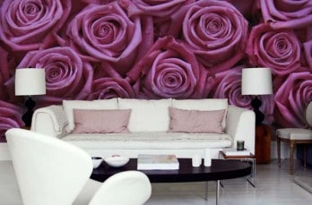 The Secret Garden wall mural collection by PIXERS