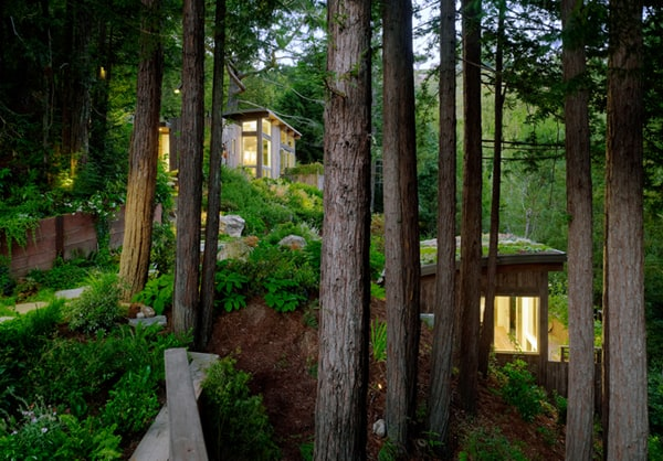 Mill Valley Cabins-Feldman Architecture-05-1 Kindesign