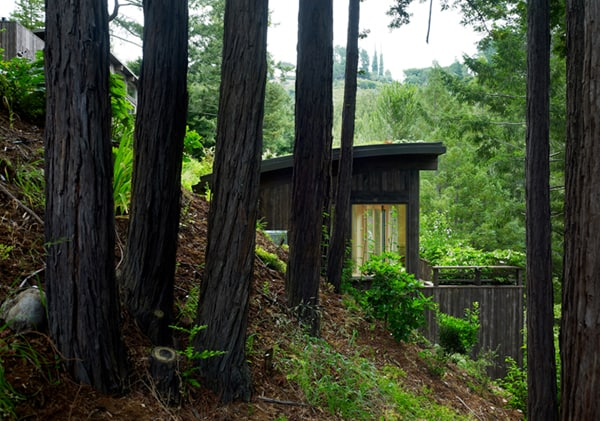 Mill Valley Cabins-Feldman Architecture-13-1 Kindesign