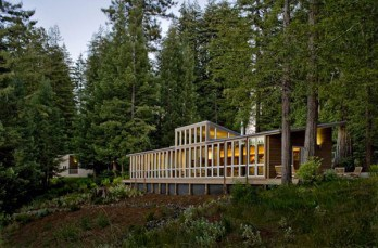 Sebastopol Residence opens towards a forested landscape