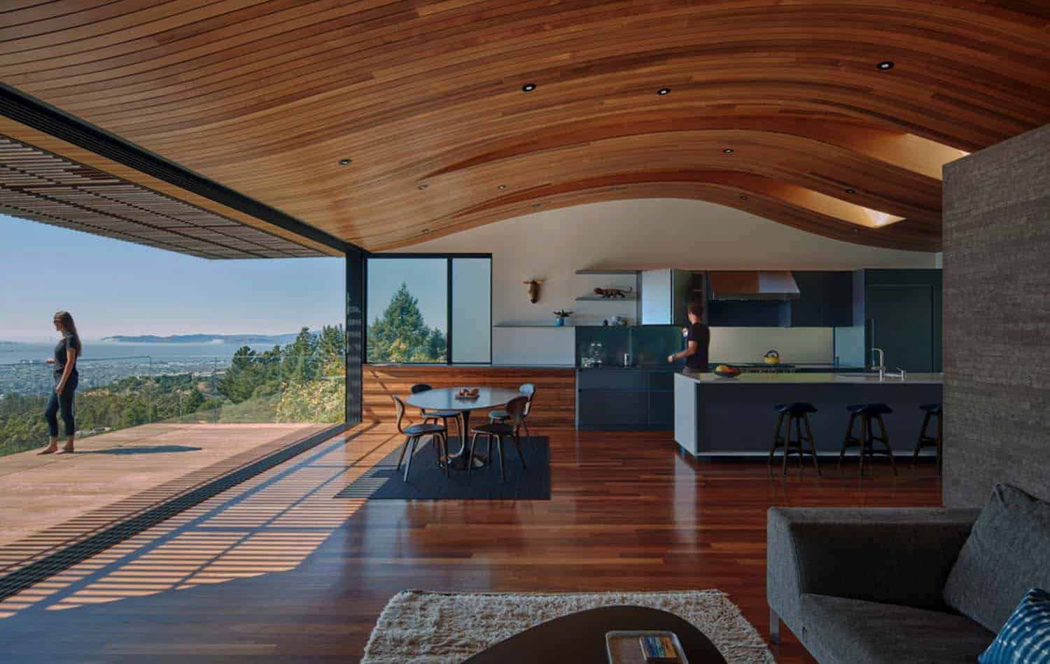 Contemporary Home Design-Terry Terry Architecture-11-1 Kindesign