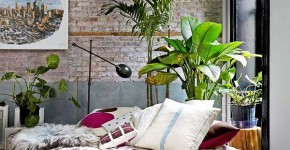 Decorating with Plants: 39 Most Awesome Spaces